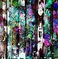 Fantasy Forest by Barbara March