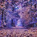 Fantasy Forest by Georgiana Romanovna