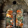 Fantasy Goldfish Aquarium by James DeFazio