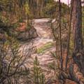 Fantasy Land by John M Bailey