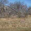2303 - Fargo Road Forgotten by Sheryl L Sutter