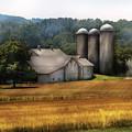 Farm - Barn - Home On The Range by Mike Savad