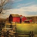 Farm - Barn - I Bought The Farm by Mike Savad