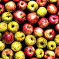 Farm Apples by Todd Carter