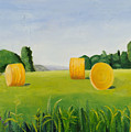 Farm Bales by Gloria Cigolini-DePietro