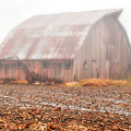 Farm Barn by Carlton Cates