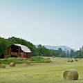 Farm Barn Listing by Douglas Barnett