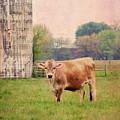 Farm Dreamscape by Ilona Erwin