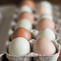 Farm Fresh Eggs by Ken Stigler