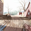 Farm Fresh by Steven J White PWS