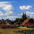 Farm House by Scott Brown