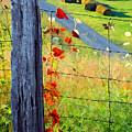 Farm Life by Sam Davis Johnson