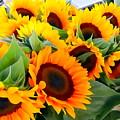 Farm Stand Sunflowers #8 by Ed Weidman
