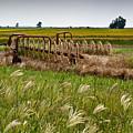 Farm Work Wiind And Rain by Douglas Barnett