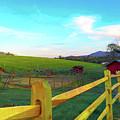 Farm Yard Fence by Rod Whyte
