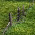 6002 - Farm Yard Fence by Sheryl Sutter