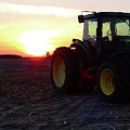 Farmers Delight by Gina Welch