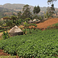 Highland Village, Guge Mountains, Ethiopia by Aidan Moran