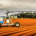 Farming Field Equipment by Jorgo Photography - Wall Art Gallery