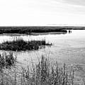 Farmington Bay View Bw by David King