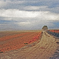 Farmland 3 by Steve Ohlsen