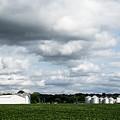 Farmland by Aedon Colino