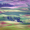 Farmland Colors - No. 1 by Nikolyn McDonald