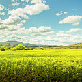 Farmland Colour by Jorgo Photography - Wall Art Gallery