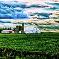 Farmland In  Hdr by Debbie Nobile