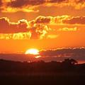 Farmland Sunset by Lauri Novak