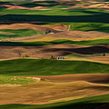 Farmland Textures Palouse by Leland D Howard