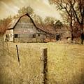 Farmscape by John Anderson