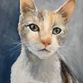 Farmyard Cat by Clodagh Kidd