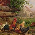 Farmyard Chickens by Carl Jutz