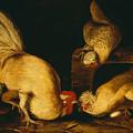 Farmyard Fowls by Mountain Dreams