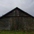 Farrowing House by Penn Patrick