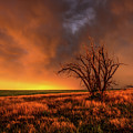 Fascinations - Warm Light And Rumbles Of Thunder In The Oklahoma Panhandle by Southern Plains Photography