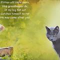 Fat Cat by Al G Smith