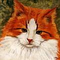 Fat Cat by Lia  Marsman