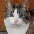 Fat Cats Of Ballard 3 by Carol  Eliassen