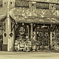 Fat Hen Grocery Sepia by Steve Harrington