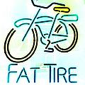 Fat Tire by Flo DiBona