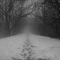 Fear by Dylan Punke