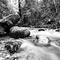 Feather Falls Stream by Jason Stanton