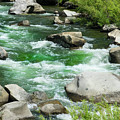 Feather River Rapids by Frank Wilson