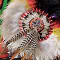 Feathers And Beads by Alan Toepfer