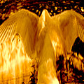 Feathers Of Light - Gold by Artistic Mystic