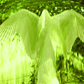 Feathers Of Light - Green by Artistic Mystic
