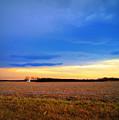 February Fields by Cricket Hackmann