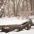 February Snow by Kimberly Noxon